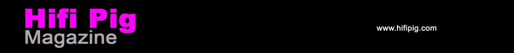 HIFI-PIG-cropped-header-300dpi