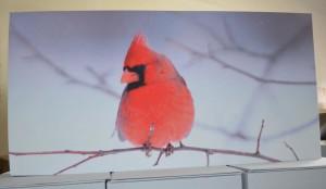GIK ArtPanel Cardinal