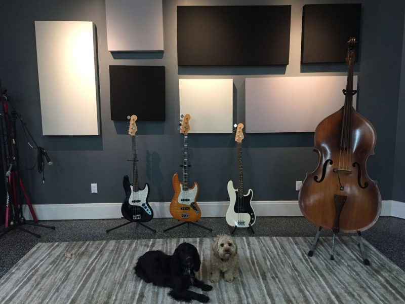 GIK Acoustics 242 acoustic panels with bass guitars and upright bass in front of 242 acoustic panels in different sizes and colors